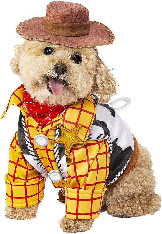 #1 Woody Dog Costume-1
