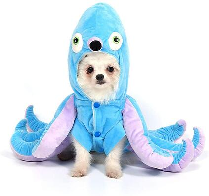 #12 Dog Octopus Halloween Costume