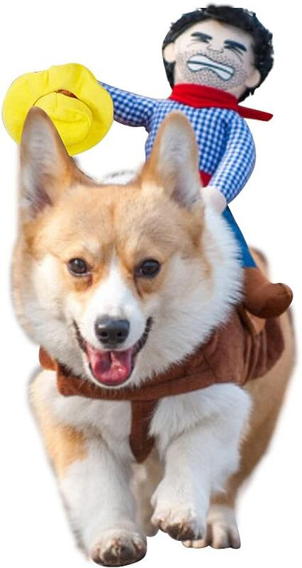 #13 Dog Coboy riding halloween costume