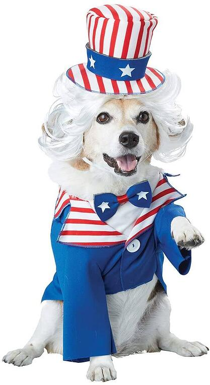 #19 Dog Uncle Sam Halloween Costume