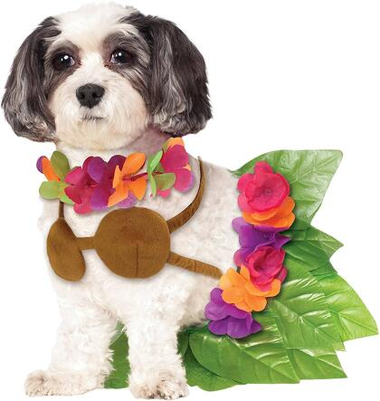 #24 Dog Hula Skirt Halloween Costume