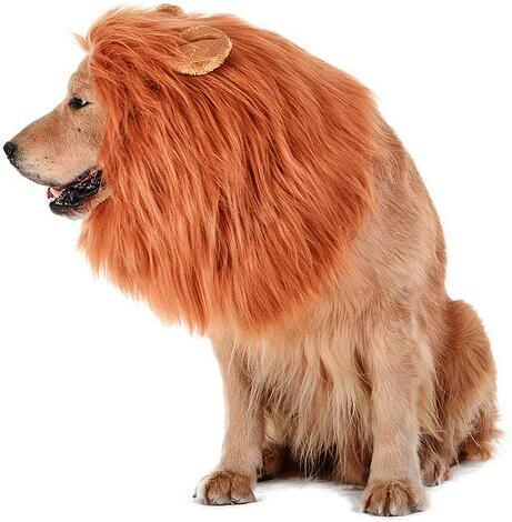 #5 Lion Main Dog Halloween costume