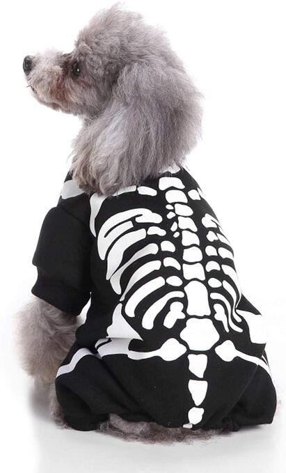 #6 Doggy Skeleton Halloween Costume