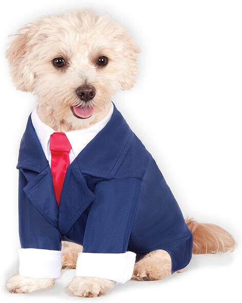 #8 Dog Suit and Tie Halloween Costume