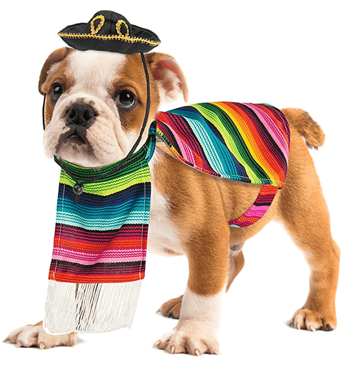 #9 doggy serape mexican pancho halloween costume