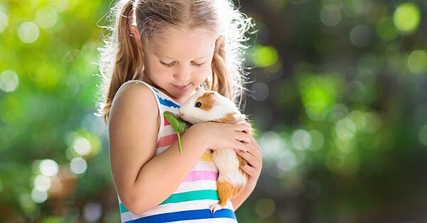 low maintenance pets for young kids and families