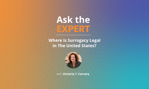 Where_Is_Surrogacy_Legal_US