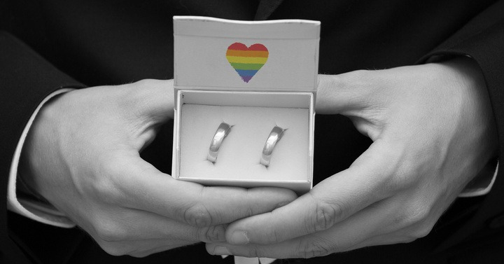 gay, bi and trans weddings to celebrate